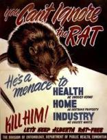 rat menace